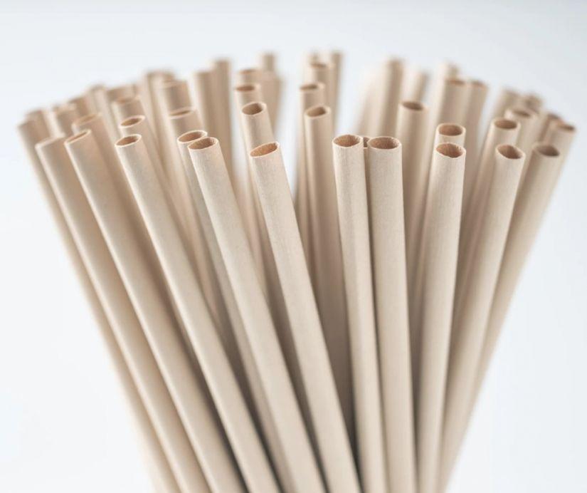 TIFC Bubble Tea bambufiber sugrör 100 st